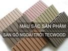 Bảng màu sàn gỗ đẹp cho trang trí ngoại thất