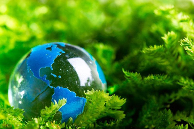 cần bảo vệ môi trường trước hậu quả biến đổi khí hậu do ô nhiễm